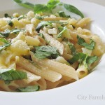 Summer Lemon Herb Zucchini Penne Alfredo