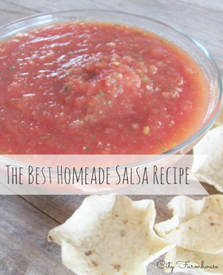 The Best Salsa Recipe In The World!