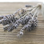 Last Minute Gift Idea-Lavender Mint Sugar Scrub