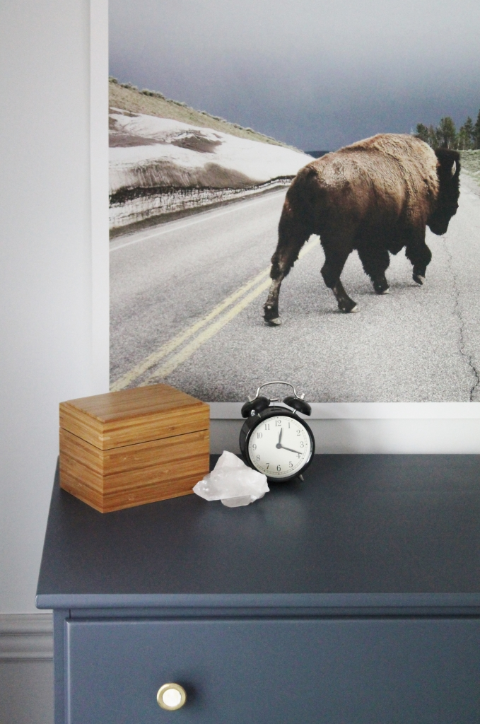 Rustic Tween Boys Room-Cyberspace Paint & Buffalo Print