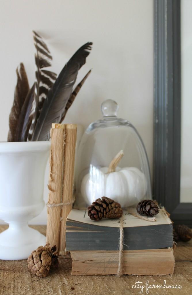 Dekorationly.com DIY Feather Art-Collect & Creëer met de dingen waar je van houdt houdt feather dingen creeer collect