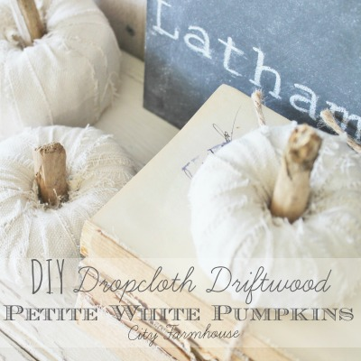 DIY Dropcloth Driftwood Petite Pumpkins City Farmhouse Feature