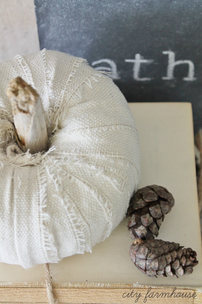 DIY Dropcloth Driftwood Petite Pumpkins-Simple Fall Project- Costs Less Than 30 cents