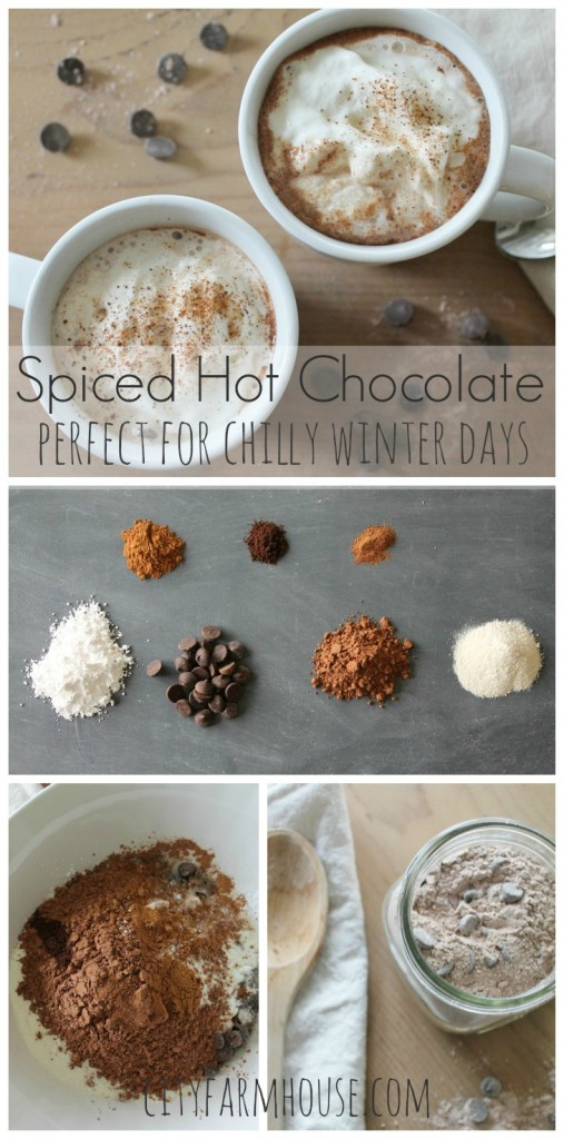 Spiced Hot Chocolate {perfect for chilly winter days}-City Farmhouse