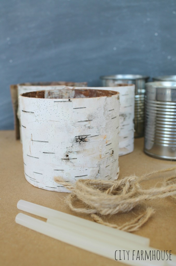 DIY Birch Flower Vases-What you need {City Farmhouse}