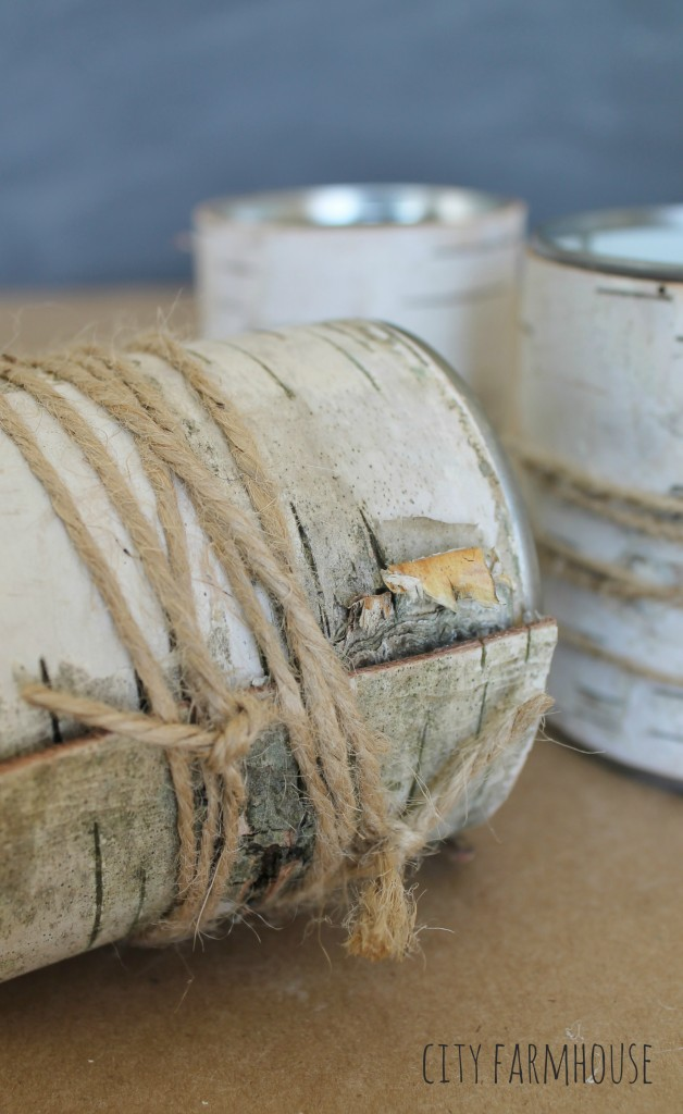 DIY Birch Flower Vases- Wrap with Twine {City Farmhouse}