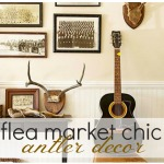Lets Talk Antler Decor