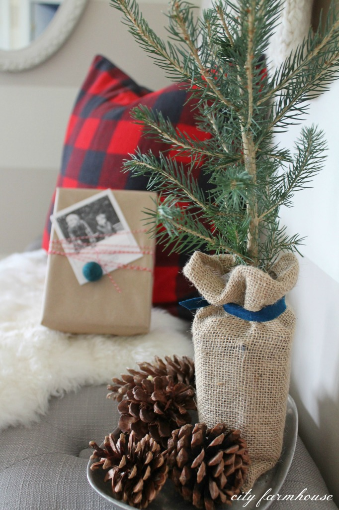 Christmas Printable + Vignette {Birch Lane Potted Baby Spruce}