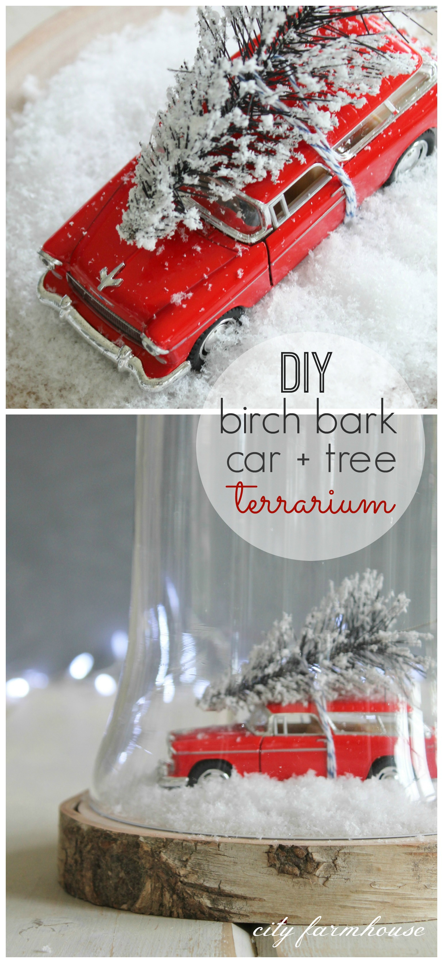 DIY Birch Bark Car + Tree Terrarium - City Farmhouse
