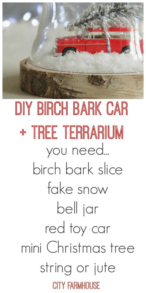 DIY Birch Bark Car + Tree {what you will need}