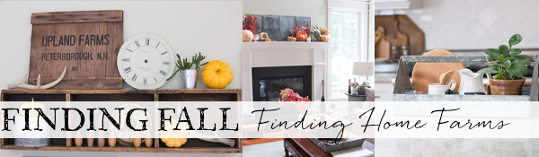 Finding Fall Finding Home Farms