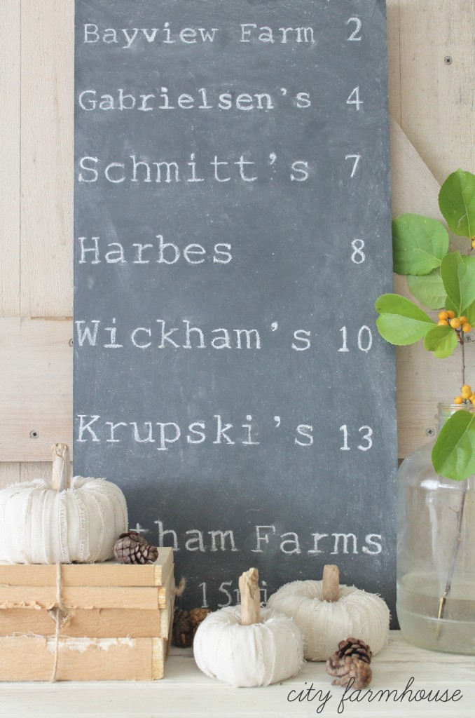 DIY Dropcloth Driftwood Petite Pumpkins & North Fork Pumpkin Patches-Easy Fall Decorating Project_City Farmhouse
