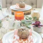 Rustic Chic Thanksgiving Tablescape + Hop