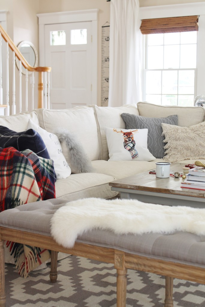 Holiday Housewalk, Craftberry Bush Pillow