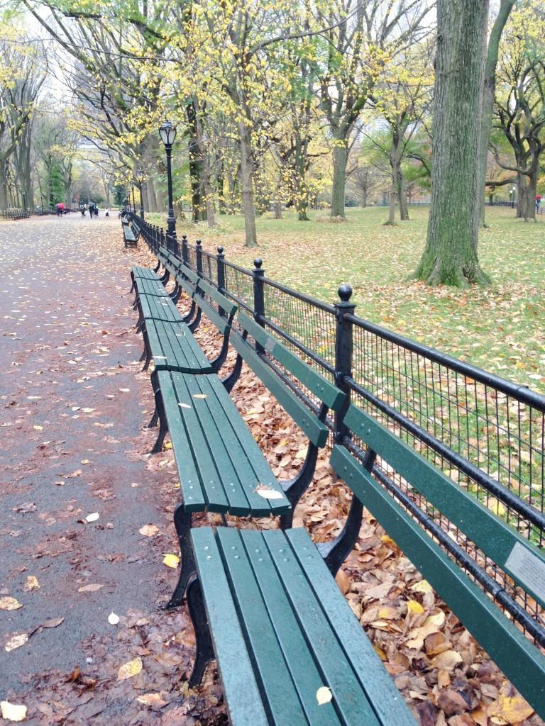 Cemtral Park