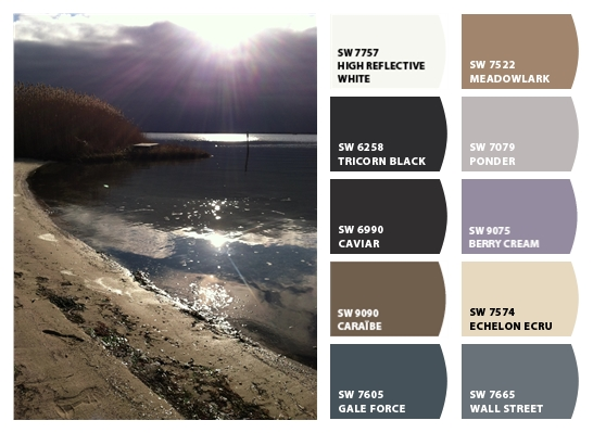 Sherwin-Williams Color Snap-Tricorn Black, Caviar, Gale Force, Wall Street, Ponder