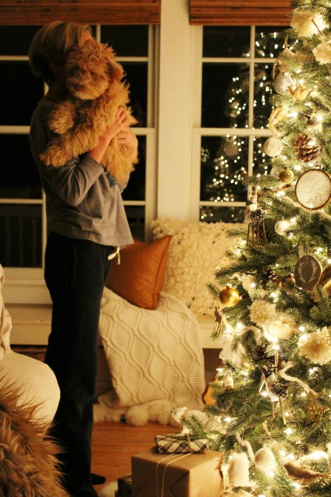 Cozy + Casual Modern Farmhouse Christmas Tour