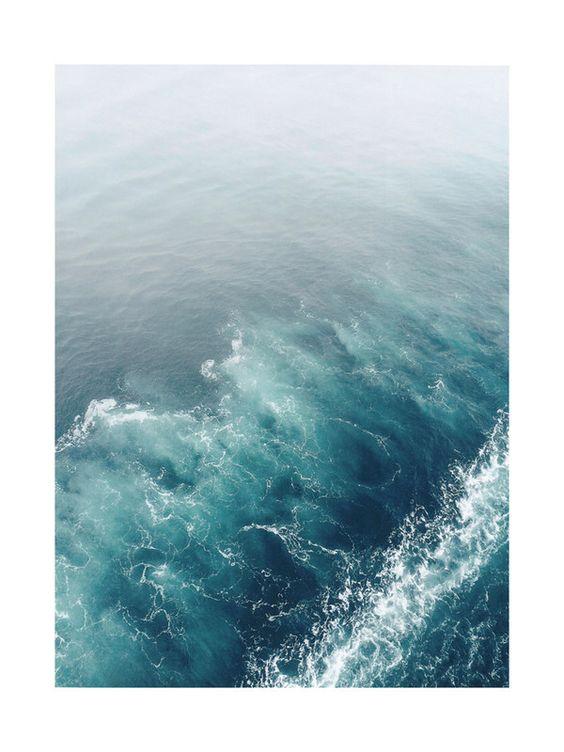 Marbled Wake