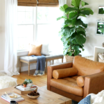 How I Saved My Fiddle Leaf Ficus Tree By Doing 6 Simple Things